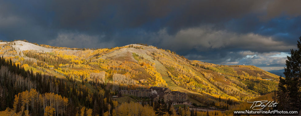 Deer Valley fall foliage Photo