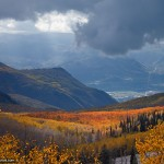 Nature Photo of Utah Fall Foliage