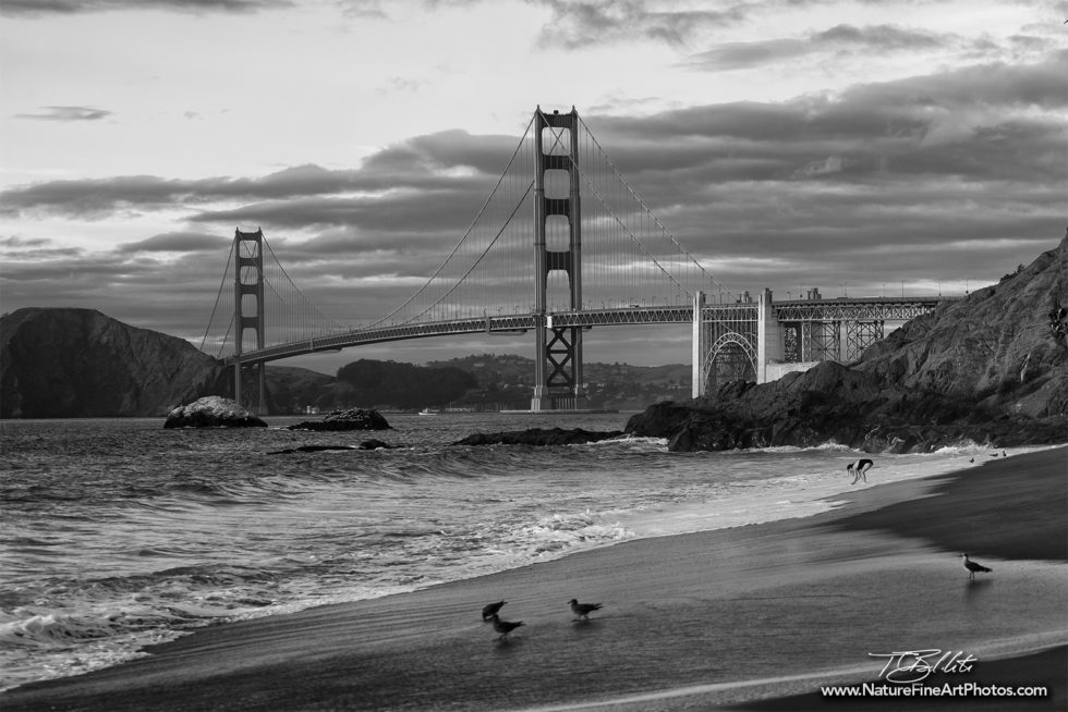 Black and white photo of Baker Beach Golden Gate Bridge
