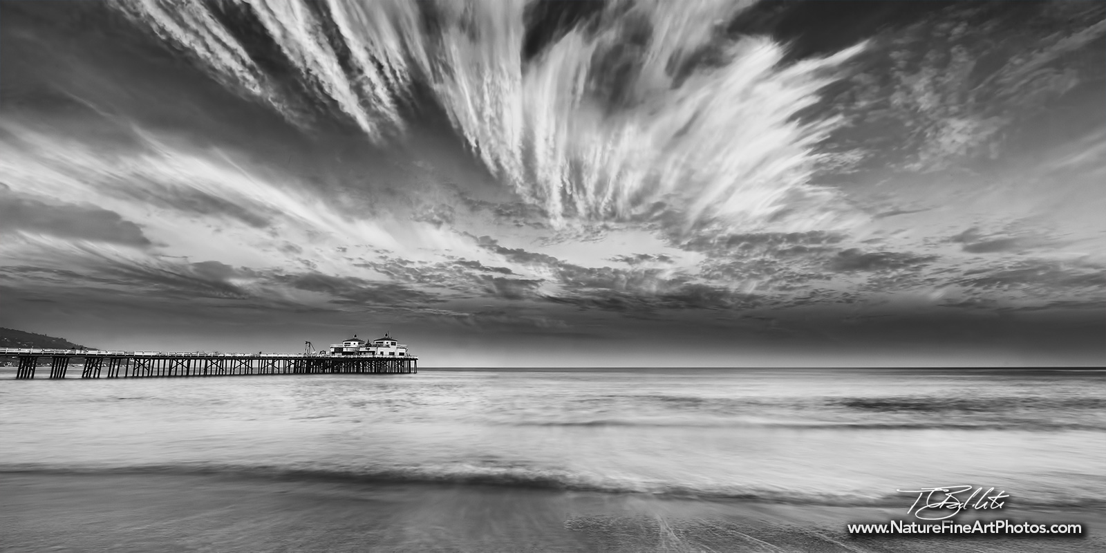 Wildlife photo · malibu cloud art panorama black and white