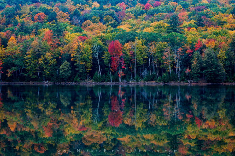 photo of fall colors reflection