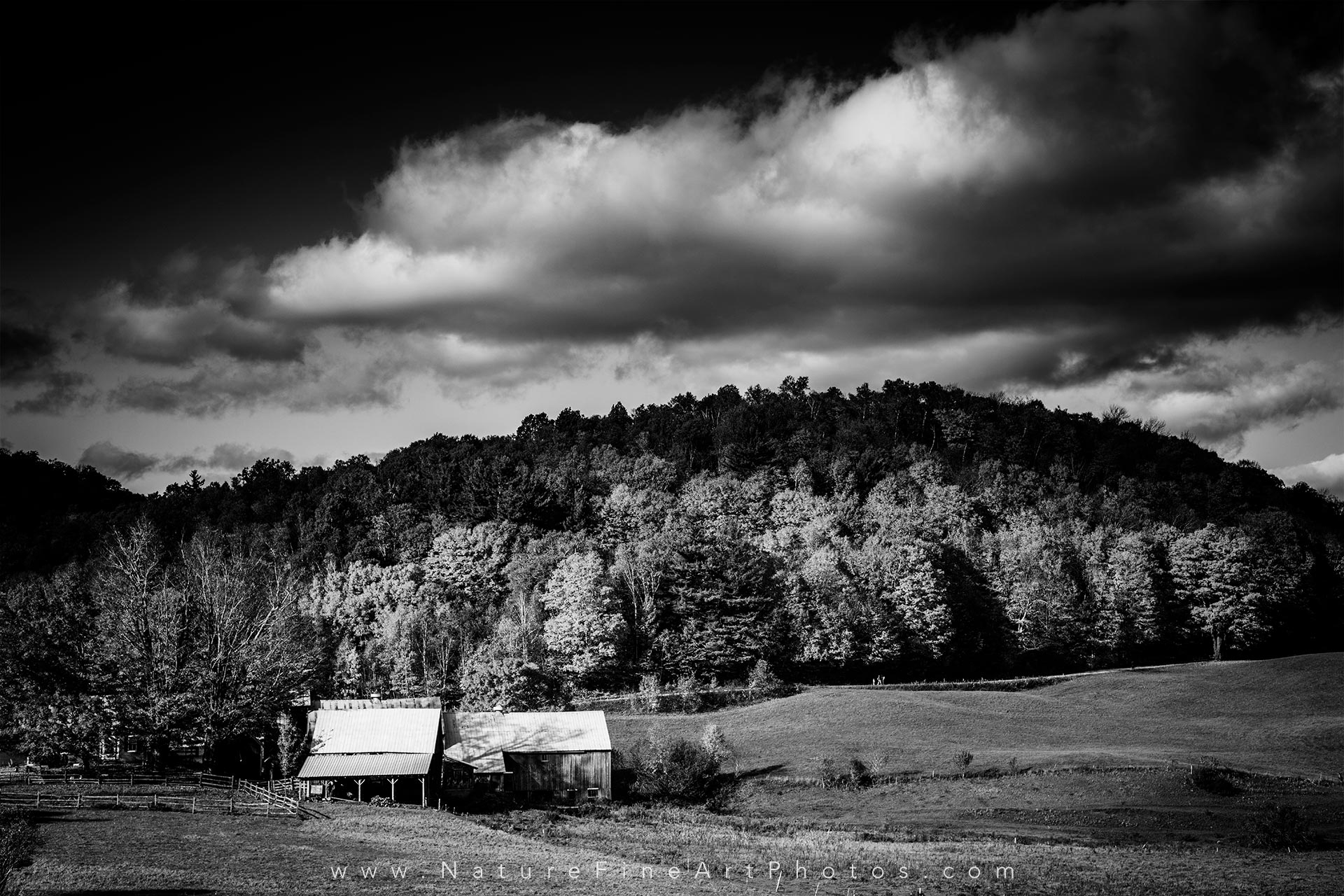 Vermont barn fall foliage photo black and white