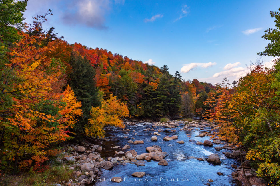 fall foliage along river on whiteface mountain New York