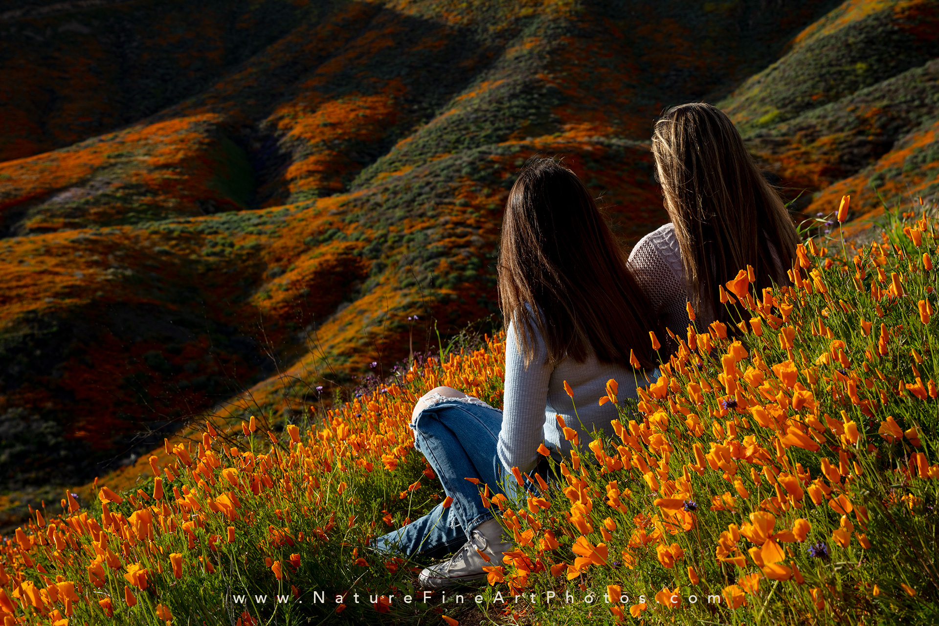 girls sitting in wildflowers superbloom Walker Canyon